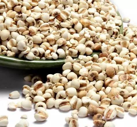 具有防癌作用的薏米,究竟应该怎么吃?
